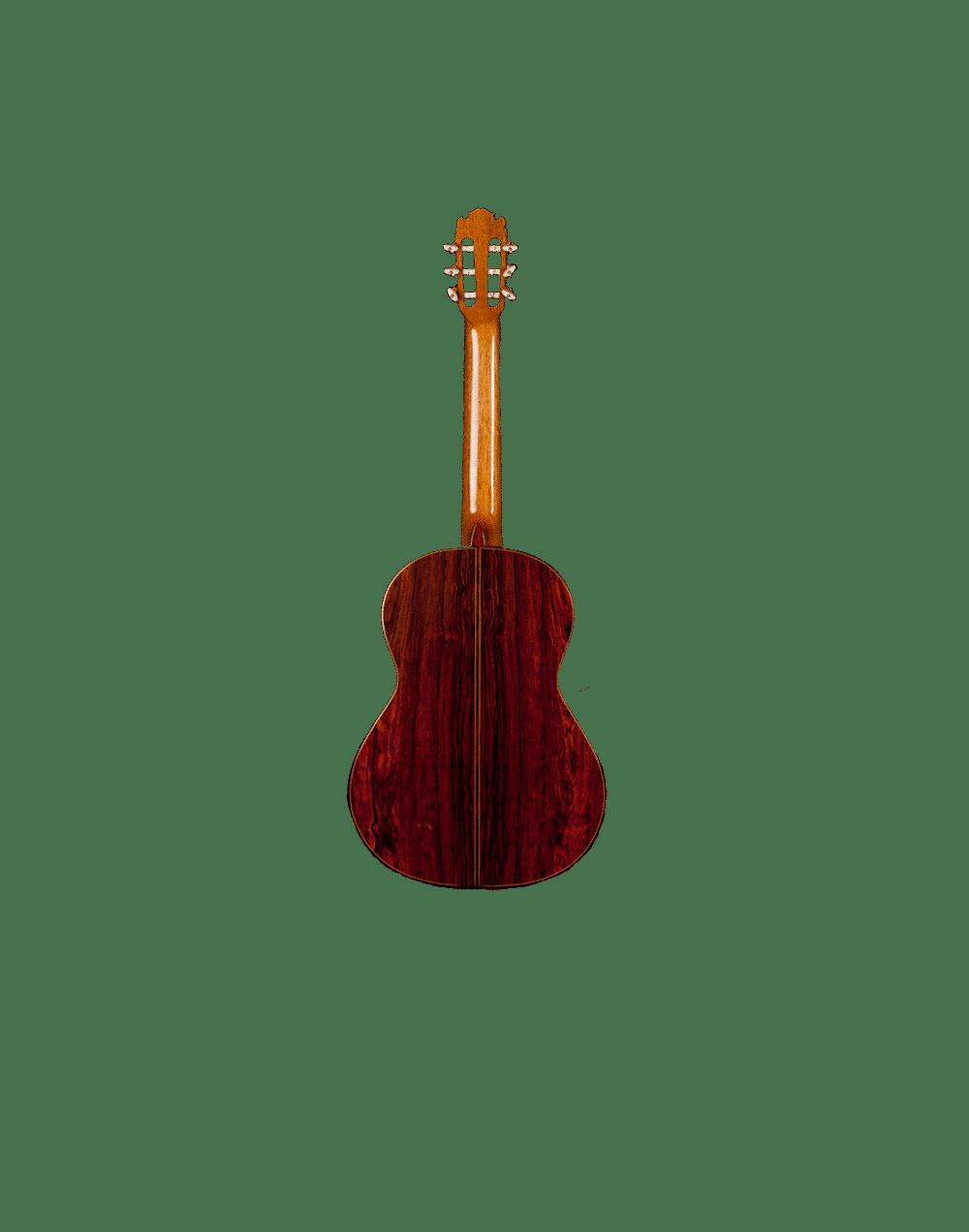 Contreras_Gitarre